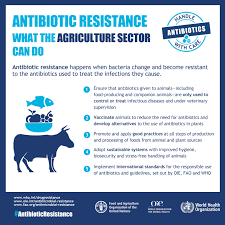 Antibiotics In Our Food Supply